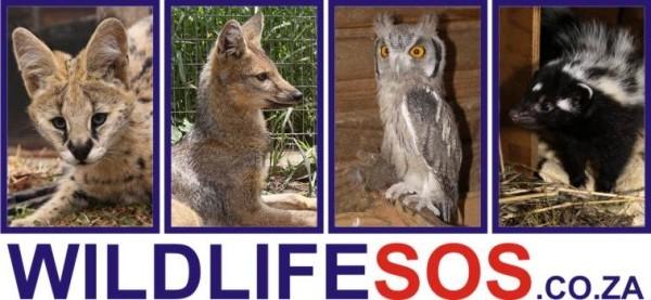 wildlifesos