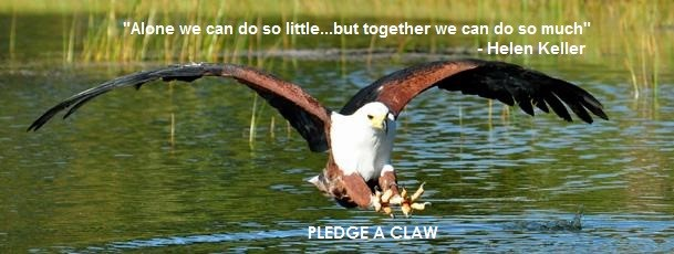 Pledge a Claw 001
